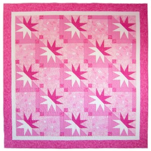 Pink Iowa-KSU House Divided Quilt