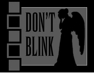Doctor Who Don't Blink Pillow